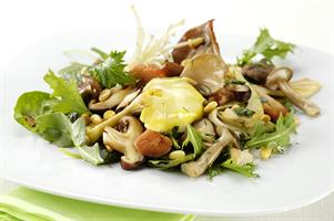 Vegetarian Warm Exotic Mushroom Salad